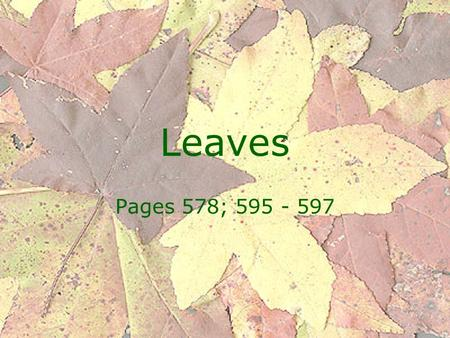 Leaves Pages 578; 595 - 597.