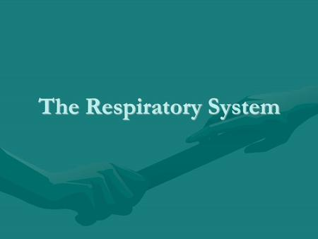The Respiratory System. Describe the connection between the circulatory and respiratory systems. Pulmonary Arteries pick up Oxygen and drop off carbon.