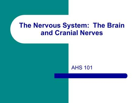 The Nervous System: The Brain and Cranial Nerves