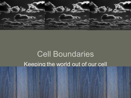 Cell Boundaries Keeping the world out of our cell.