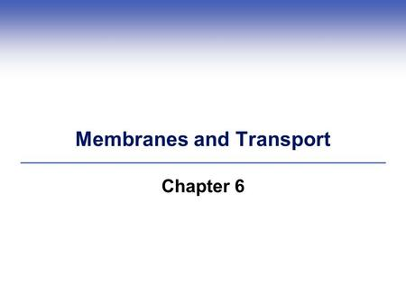 Membranes and Transport Chapter 6. 6.1 Membrane Structure  Biological membranes contain both lipid and protein molecules  Fluid mosaic model explains.
