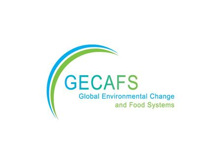 FAOCGIARWMO A food-secure future for those most vulnerable to environmental stress. GECAFS Vision.