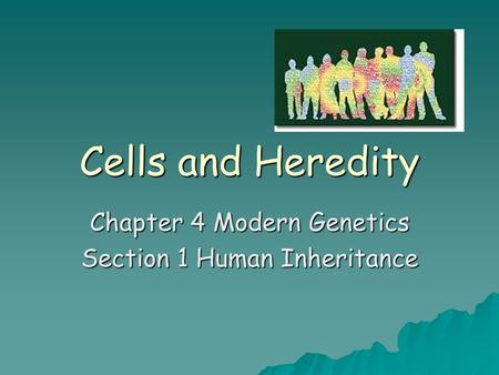 Chapter 4 Modern Genetics Section 1 Human Inheritance