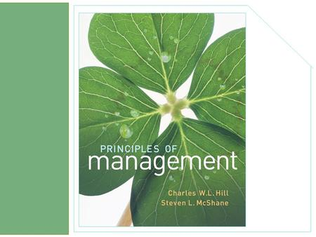 chapter 2 The External and Internal Environment McGraw-Hill/Irwin Principles <strong>of</strong> Management © 2008 The McGraw-Hill Companies, Inc., All Rights Reserved.