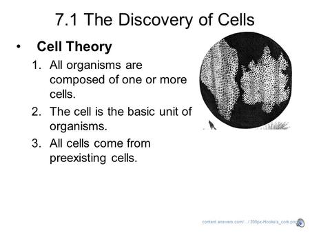 7.1 The Discovery of Cells Cell Theory 1.All organisms are composed of one or more cells. 2.The cell is the basic unit of organisms. 3.All cells come.
