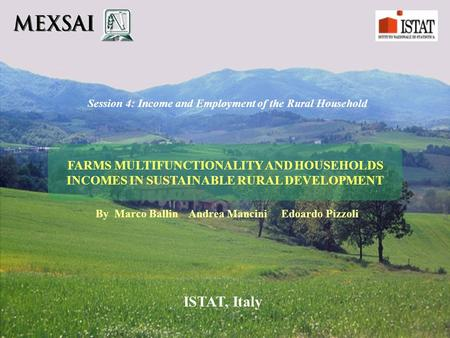 FARMS MULTIFUNCTIONALITY AND HOUSEHOLDS INCOMES IN SUSTAINABLE RURAL DEVELOPMENT Session 4: Income and Employment of the Rural Household By Marco Ballin.