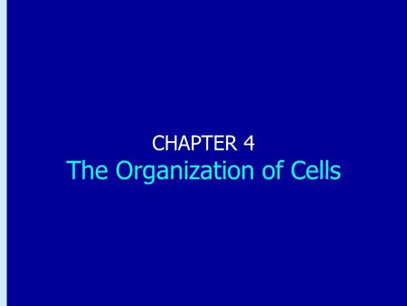 CHAPTER 4 The Organization of Cells