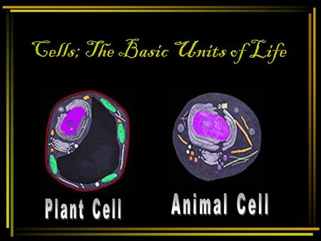 Cells; The Basic Units of Life