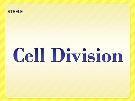 STEELE Cell Division.