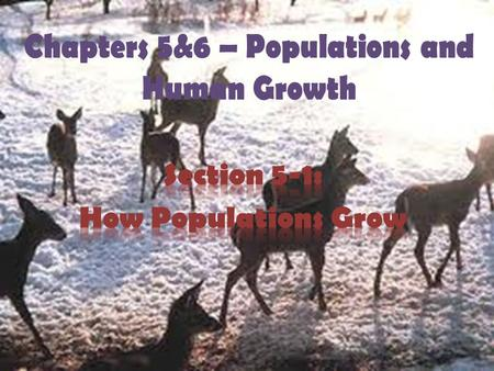 Chapters 5&6 – Populations and Human Growth