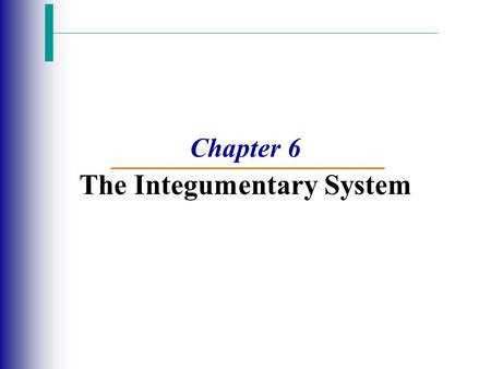 Chapter 6 The Integumentary System