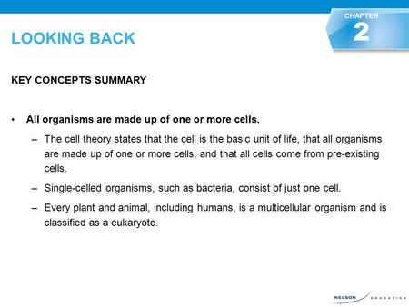 LOOKING BACK KEY CONCEPTS SUMMARY All organisms are made up of one or more cells. –The cell theory states that the cell is the basic unit of life, that.