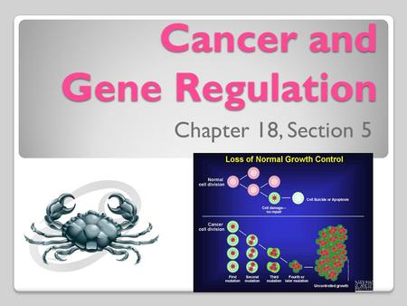 Cancer and Gene Regulation Chapter 18, Section 5.