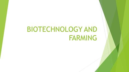 BIOTECHNOLOGY AND FARMING. RICE  10 YEARS- 150 million dollars later……………………..  Rice that is enriched with vitamin A- it was modified using 2 genes-