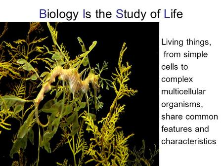 Biology Is the Study of Life Living things, from simple cells to complex multicellular organisms, share common features and characteristics.