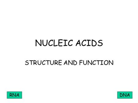 NUCLEIC ACIDS STRUCTURE AND FUNCTION RNADNA. MONONUCLEOTIDE PHOSPHATE PENTOSE SUGAR ORGANIC BASE.