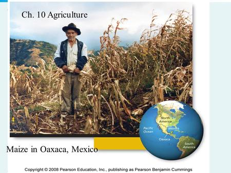 Copyright © 2008 Pearson Education, Inc., publishing as Pearson Benjamin Cummings 10_00-CS.JPG Maize in Oaxaca, Mexico Ch. 10 Agriculture.