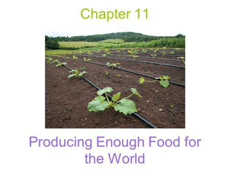 Producing Enough Food for the World