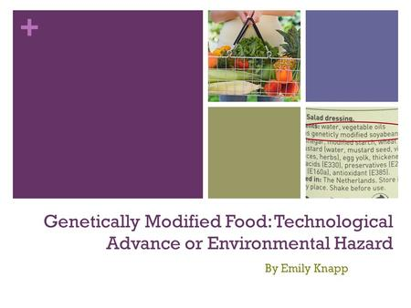 + Genetically Modified Food: Technological Advance or Environmental Hazard By Emily Knapp.