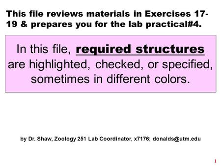 1 This file reviews materials in Exercises 17- 19 & prepares you for the lab practical#4. by Dr. Shaw, Zoology 251 Lab Coordinator, x7176;