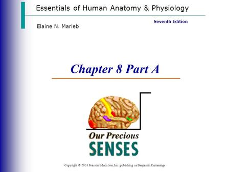 Chapter 8 Part A Vision Essentials of Human Anatomy & Physiology