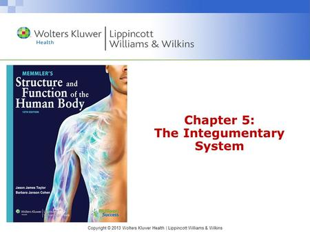 Copyright © 2013 Wolters Kluwer Health | Lippincott Williams & Wilkins Chapter 5: The Integumentary System.