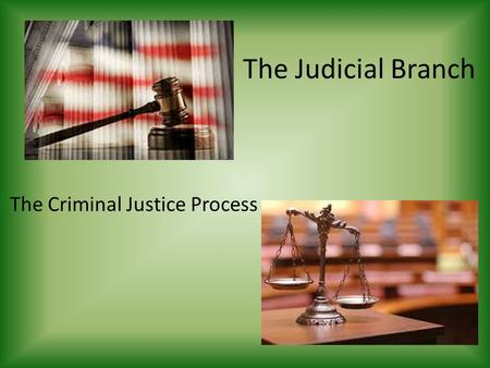 The Judicial Branch The Criminal Justice Process.