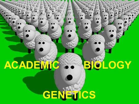 "ACADEMIC BIOLOGY GENETICS. I.Gregor Mendel 1842 Who was he? - Austrian monk whose task was tending the garden in his monastery. - Known as the ""Father."