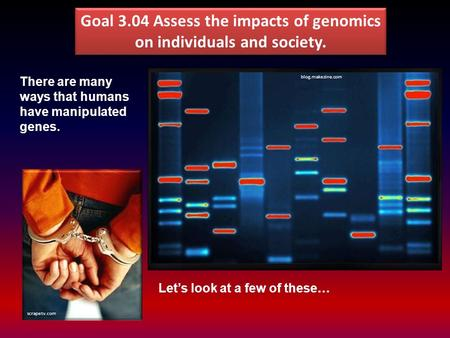 Goal 3.04 Assess the impacts of genomics on individuals and society. scrapetv.com blog.makezine.com There are many ways that humans have manipulated genes.