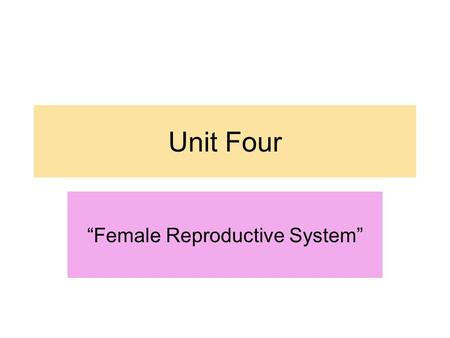 """Female Reproductive System"""