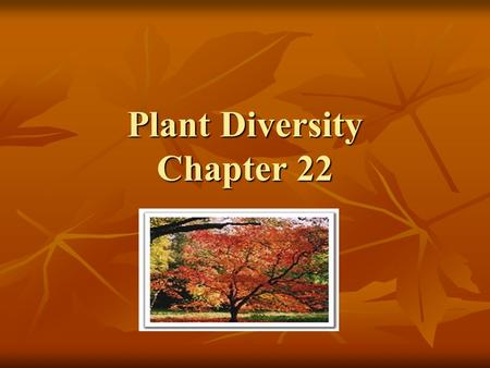 Plant Diversity Chapter 22. What is a Plant? Plants are the base for the food chain on land. Plants are the base for the food chain on land. Provide shade,