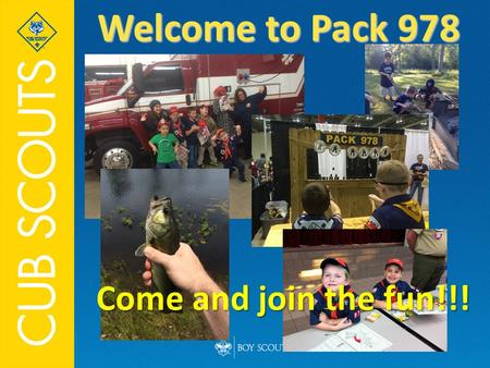 Welcome to Pack 978 Come and join the fun!!!.  Cub Scout sign  Cub Scout salute Welcome  Pledge of Allegiance.
