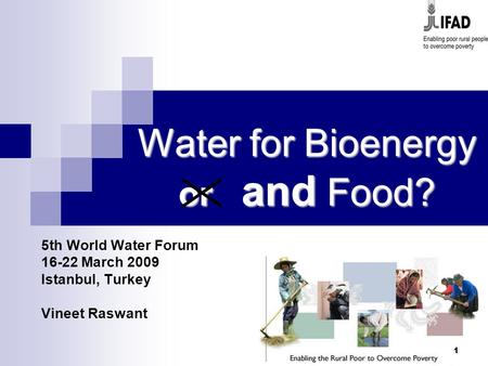 1 Water for Bioenergy or and Food? 5th World Water Forum 16-22 March 2009 Istanbul, Turkey Vineet Raswant.