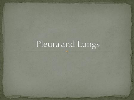 Pleura and Lungs.