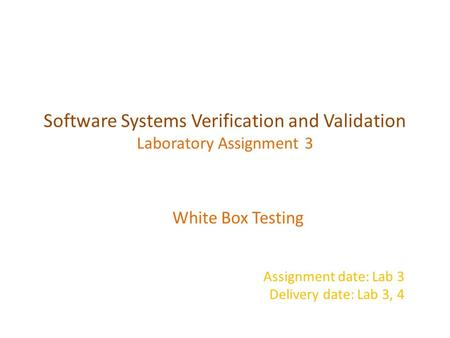 Software Systems Verification and Validation Laboratory Assignment 3