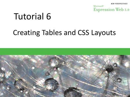 Tutorial 6 Creating Tables and CSS Layouts. Objectives Session 6.1 – Create a data table to display and organize data – Modify table properties and layout.