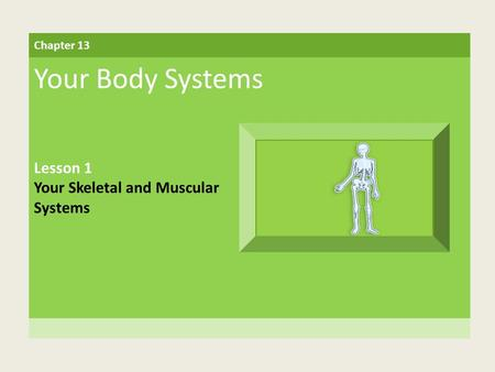 Your Body Systems Lesson 1 Your Skeletal and Muscular Systems