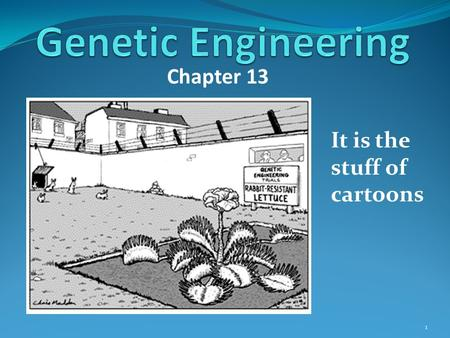 Chapter 13 It is the stuff of cartoons 1. Genetic engineering is the stuff of movies. Can you name a recent movie? 2.