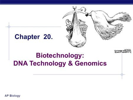 DNA Technology & Genomics