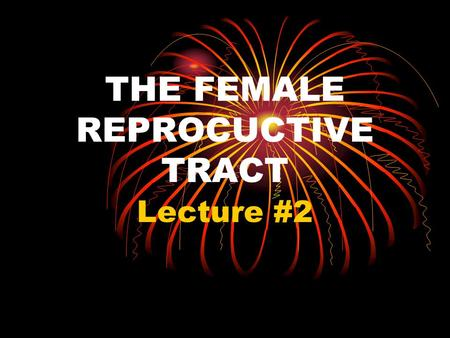 THE FEMALE REPROCUCTIVE TRACT Lecture #2. I. THE GOAL A. To produce a sex cell (egg) to unite with a sperm cell to create a new organism. B. To maintain.