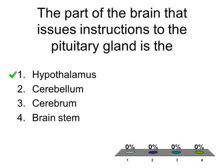 The part of the brain that issues instructions to the pituitary gland is the 1.Hypothalamus 2.Cerebellum 3.Cerebrum 4.Brain stem.