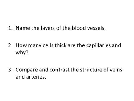 Name the layers of the blood vessels.