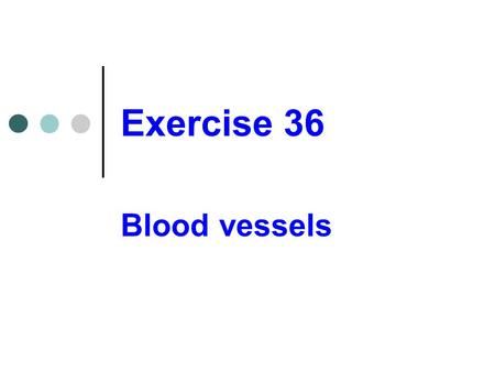 Exercise 36 Blood vessels.