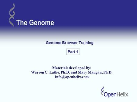 The Genome Genome Browser Training Materials developed by: Warren C. Lathe, Ph.D. and Mary Mangan, Ph.D. Part 1.