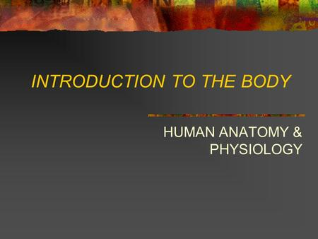 INTRODUCTION TO THE BODY HUMAN ANATOMY & PHYSIOLOGY.