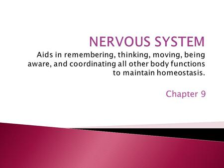 Chapter 9.  Central Nervous System (CNS)  Brain and spinal cord  Peripheral Nervous System (PNS) ◦ nerves.