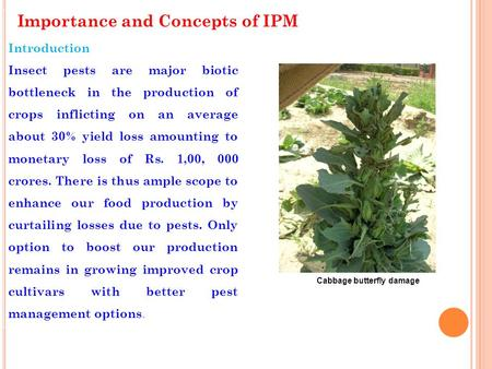 Importance and Concepts of IPM