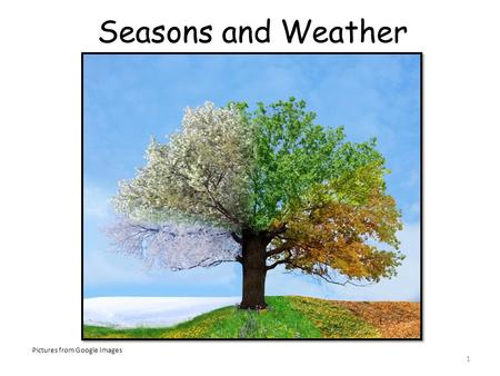 Seasons and Weather Pictures from Google Images.