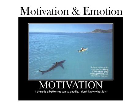 Motivation & Emotion.