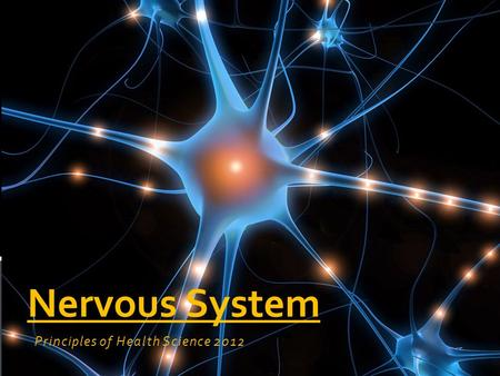 Principles of Health Science 2012 Nervous System.